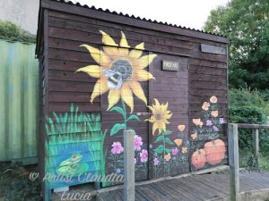 Golden Hill Community Allotment shed