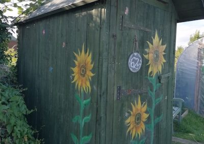 PLOT 62 Shed sunflowers